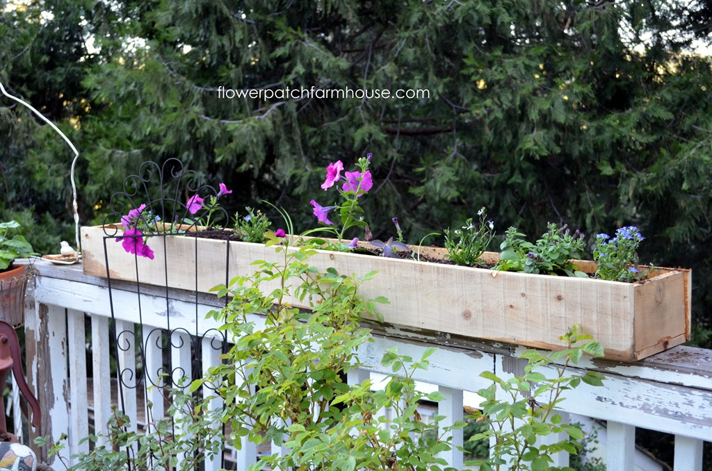 Cheap and easy cedar fence board planters flower patch - Flower planters for fences ...