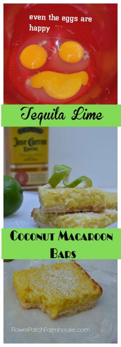 Tequila Lime Coconut Macaroon Bars, a vacation for you taste buds! FlowerPatchFarmhouse.com
