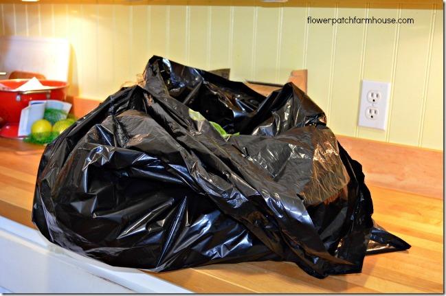 trash bag filled with fresh basil for homemade basil pesto