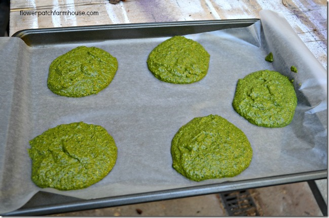 basil patties on cookie sheet ready to freeze