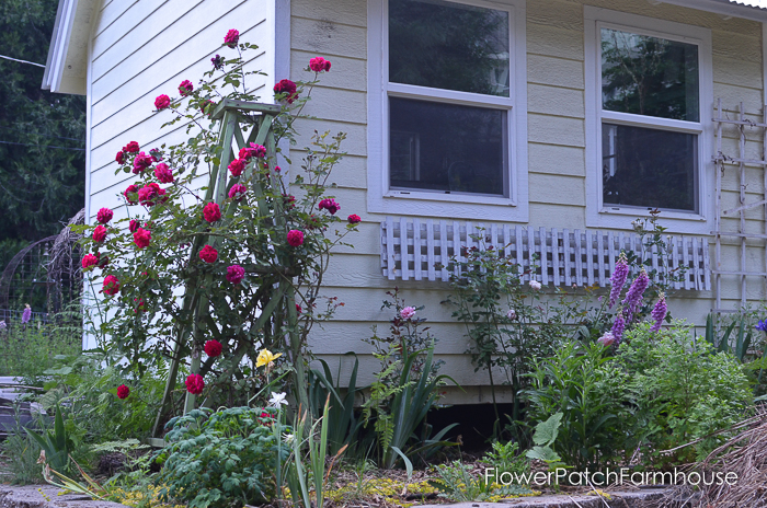Make an Easy Garden Obelisk 2