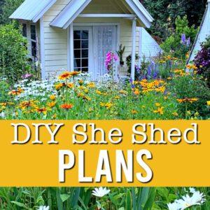 DIY she shed in cottage garden