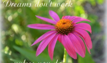Dreams Don't Work Inspiration