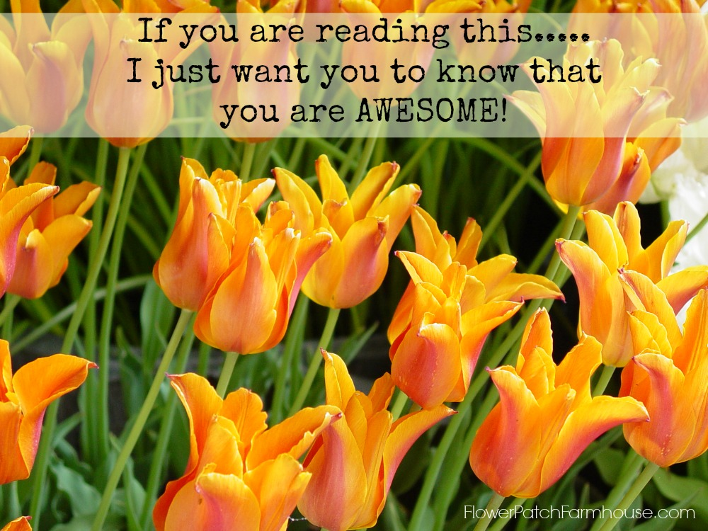 you are awesome Monday Inspiration Quote
