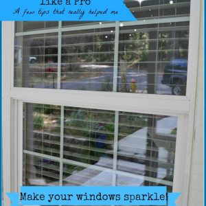Window with text overlay, Clean your windows like a pro, Flower Patch Farmhouse