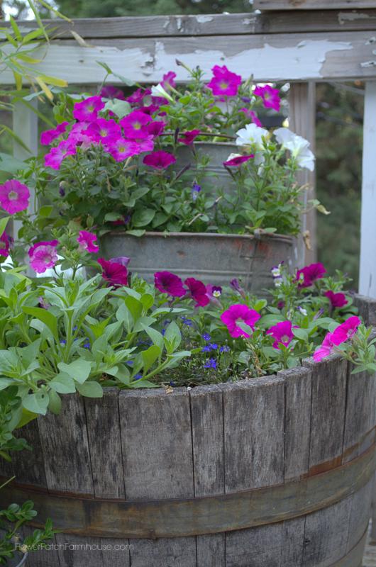 Old Buckets in a Wine Barrel www.flowerpatchfarmhouse.com