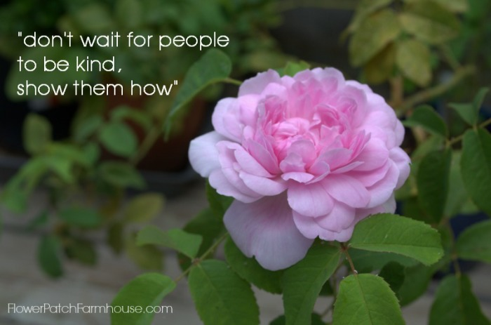 Don't wait for people to be kind, inspiration, FlowerPatchFarmhouse.com