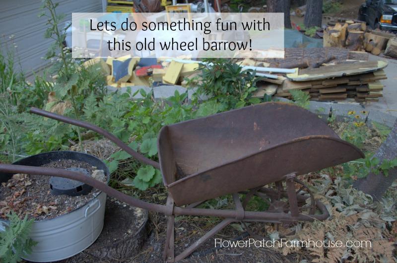 old wheel barrel2