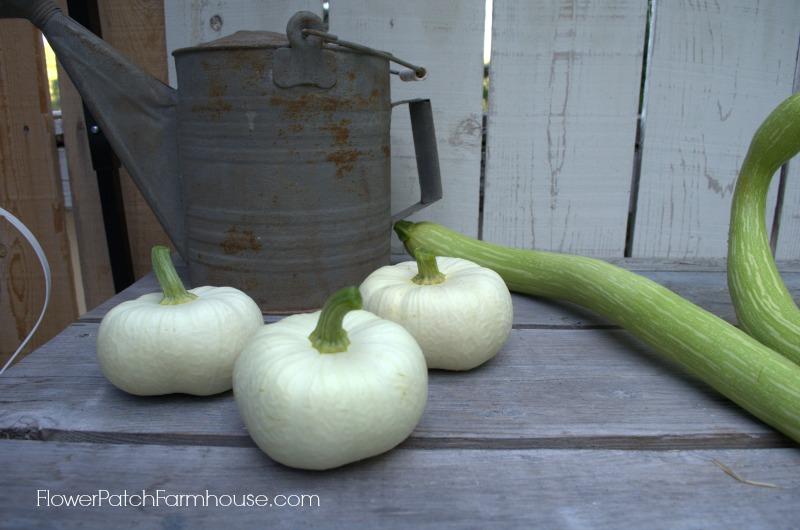white pumpkins, FlowerPatchFarmhouse.com