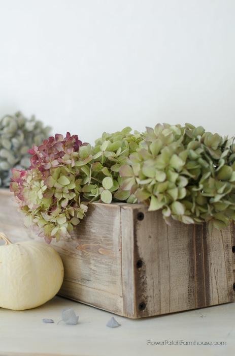 DIY rustic vintage box with Fall hydrangeas and pumpkins, FlowerPatchFarmhouse.com