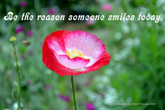 Be the Reason Someone Smiles Today, FlowerPatchFarmhouse.com