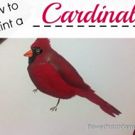 How to Paint a Cardinal Bird