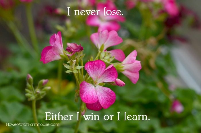 I never lose. Either I win or I learn. FlowerPatchFarmhouse.com