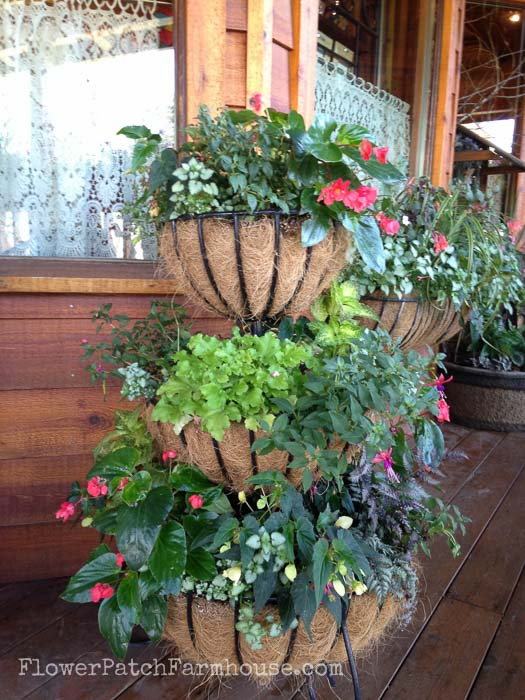 Planters for shade, FlowerPatchFarmhouse.com Shade Loving plants you can grow in containers and brighten up those dark spots!