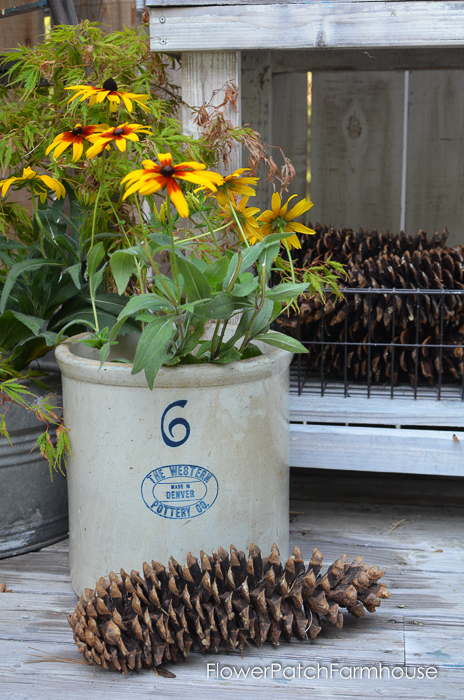 Sugar Pine Cone with vintage Crock, FlowerPatchFarmhouse.com