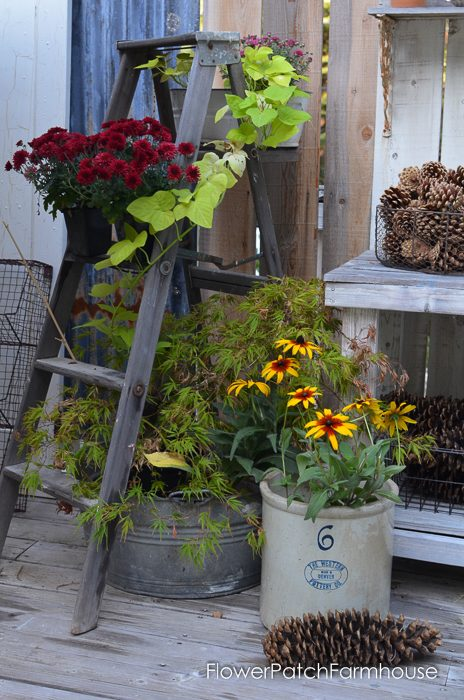 Old rustic ladder draped in Fall. FlowerPatchFarmhouse.com