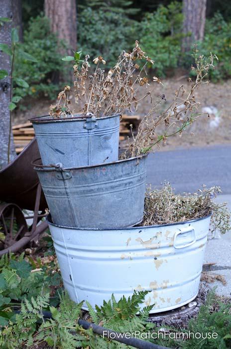 September 19 garden walk, FlowerPatchFarmhouse.com-0017
