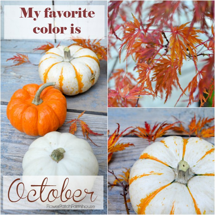 My Favorite Color is October, inspirational quote, FlowerPatchFarmhouse.com