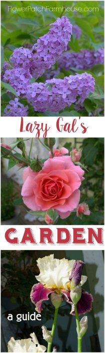 Want a beautiful garden but don't know where to start? Are you short on time, money and know how? A fabulous garden is easier than you think. Join us for this series on how to grow an easy garden that is fabulous too. FlowerPatchFarmhouse.com