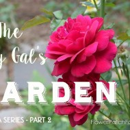 Lazy Gal's Garden Guide – Part 2