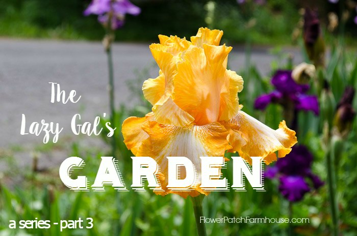 The Lazy Gal's Garden Guide, simple tips and tricks to get a gorgeous garden when you don't have much time. FlowerPatchFarmhouse.com