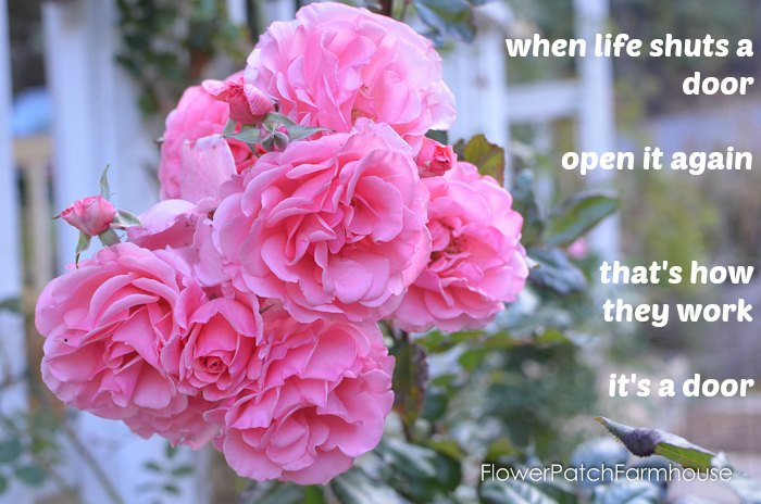 When Life Shuts a Door Inspiration Quote, an encouraging look at not letting shut doors stumble your forward path. FlowerPatchFarmhouse.com