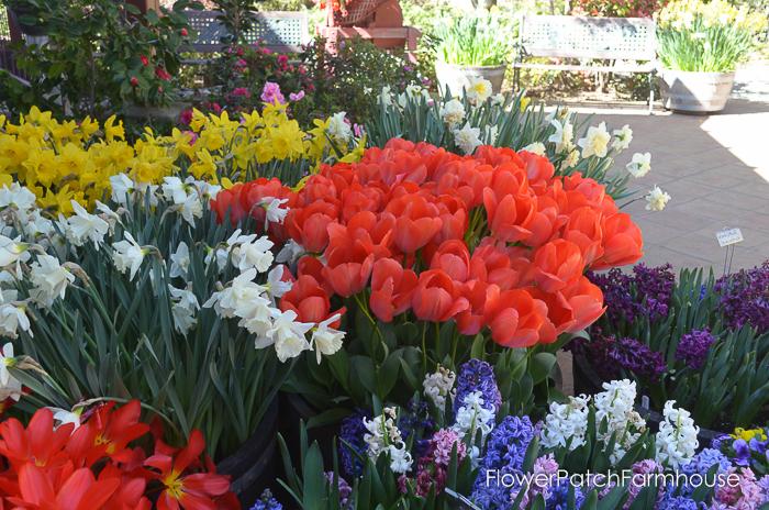 Ironstone March 2016, FlowerPatchFarmhouse.com (37 of 77)
