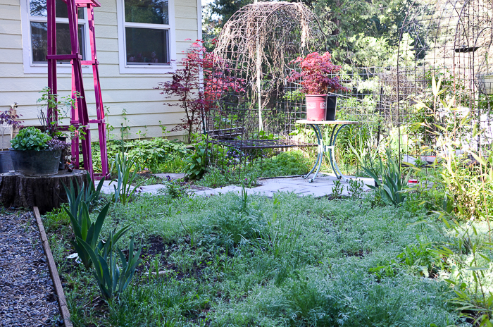 My Secret Garden in May 2016