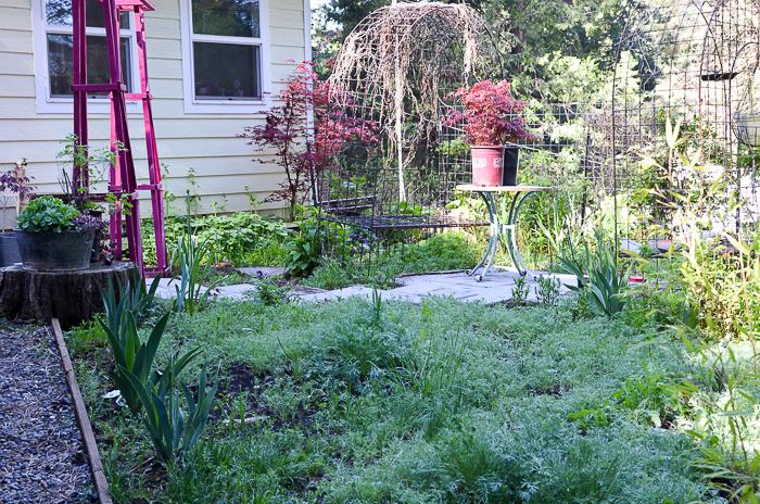 My Secret Garden in May 2016
