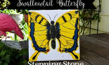Paint a Swallowtail Butterfly Stepping Stone