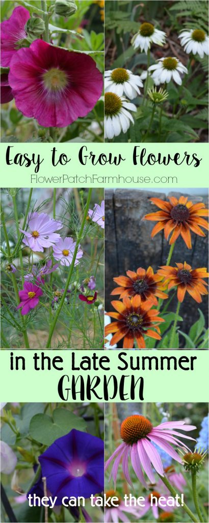 Easy to Grow flowers for your late summer garden.  They take the heat and keep on looking fabulous until frost!  Grow most from seed for an easy on the budget garden.
