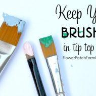Basic Brush Care for Paint Brushes