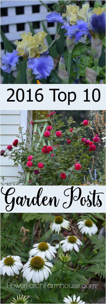 Top 10 most popular Garden Posts of 2016! Garden readers around the world came to read about these garden goodies.