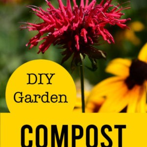 monarda with text overlay, DIY garden compost, flower patch farmhouse