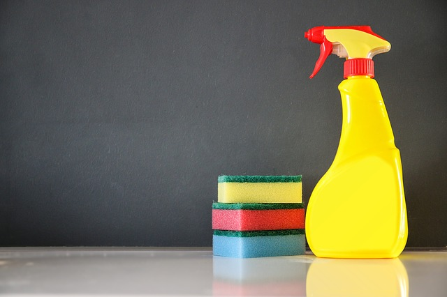 Clean house in Ten minutes, easy daily chores to keep your house clean but not take up all your time