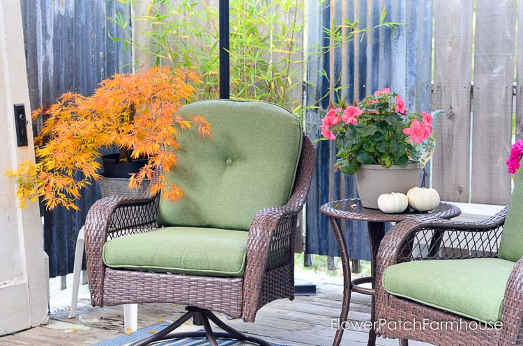 Back deck for Fall