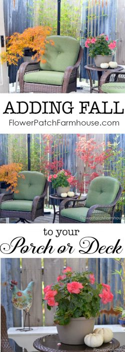 Back deck for Fall, go from Summer to Fall with just a few plant switch out and a few pumpkins. All for $6