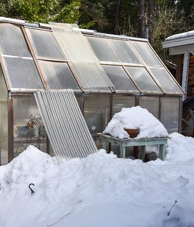 greenhouse in March snow