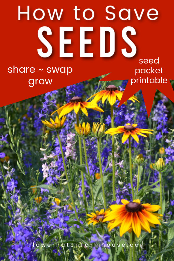 Blue and yellow flowers with text overlay, How to Save Seeds, with seed packet printable, Flower Patch Farmhouse dot come