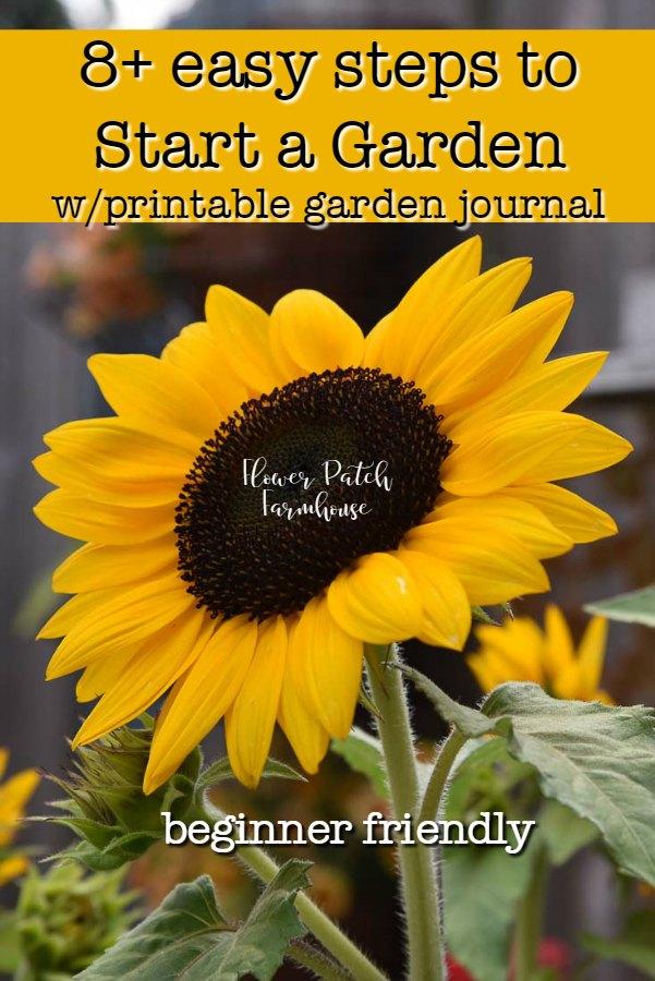 large sunflower with text overlay, start an easy garden flowerpatchfarmhouse.com