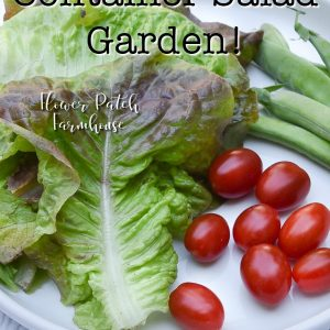lettuce, tomatoes and snap peas with text overlay, Grow a container salad garden, Flower Patch farmhouse