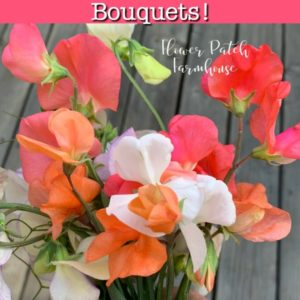 bouquet of different colors of sweet peas, sweet peas you can grow
