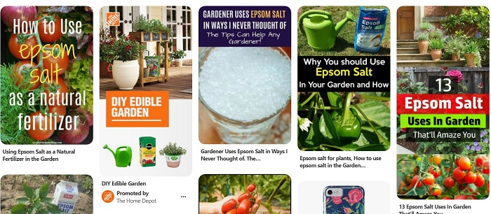 epsom salt pins