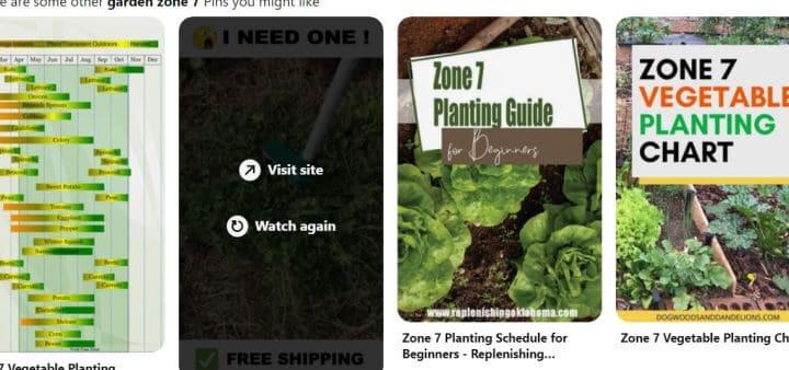 pinterest screen shot on garden zone planting