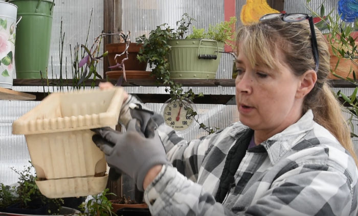 Pam holding self watering window box for a Container Vegetable Garden