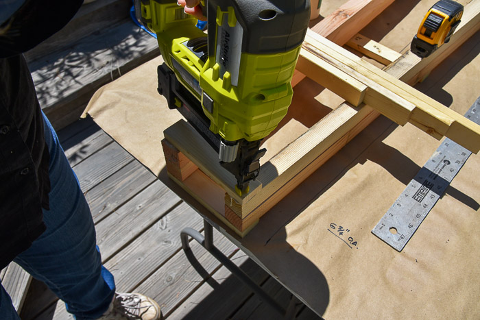 Using brad nailer to attach rung to obelisk tomato support