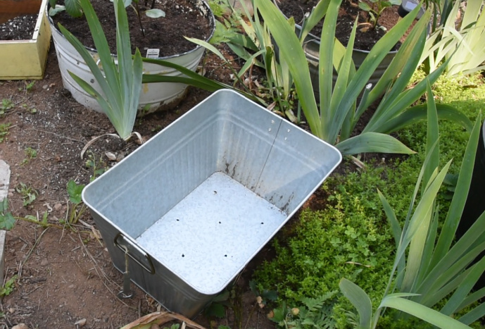 galvanized drink tub with holes drilled in it