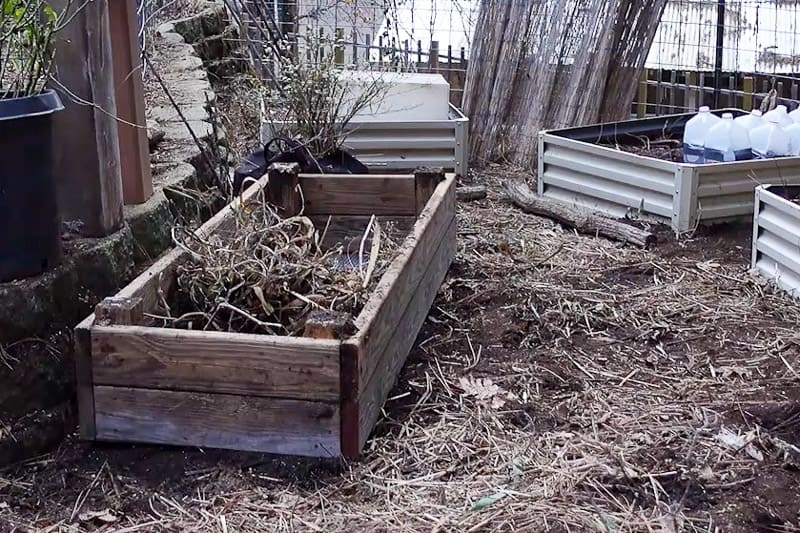 raised bed prepared for planting strawberries