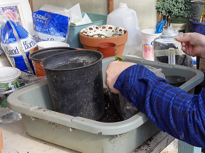 recycled nursery can or pot ready for planting