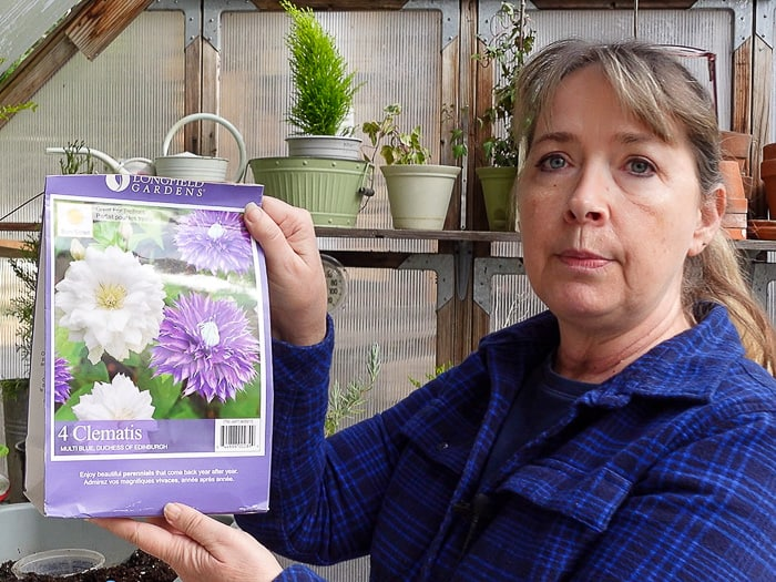 Pam holding a bag of bare root clematis from Costco
